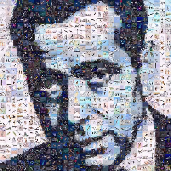 Bogart Digital Art - Bogart by Gilberto Viciedo