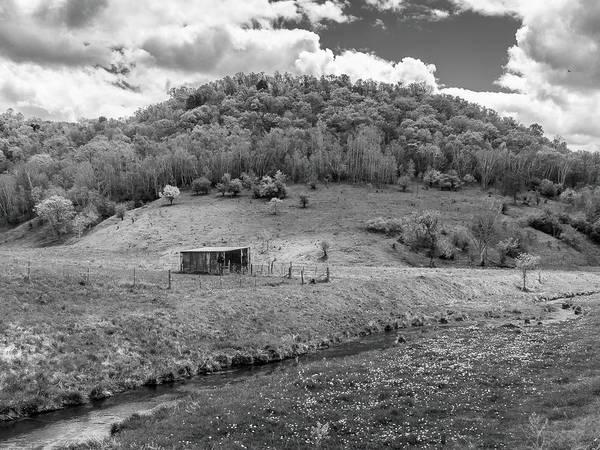 Photograph - Bohemian Creek by Mark Mille