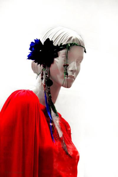 Photograph - Bohemian Spirit by Susan Vineyard