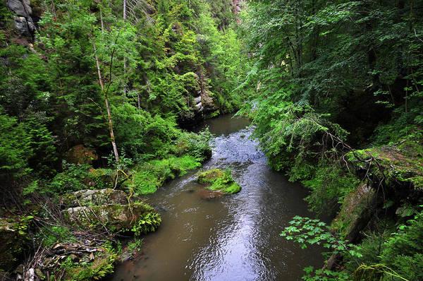 Photograph - Bohemian Switzerland. Gorge Of Kamenice by Jenny Rainbow