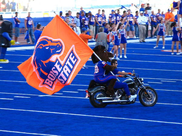 Photograph - Boise State And Buster Bronco by Lost River Photography