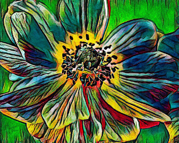 Mixed Media - Bold And Bright Anemone by Teresa Wilson