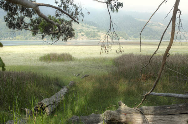 Photograph - Bolinas Bay Mist 2 by Peter Dyke