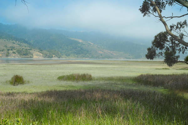 Photograph - Bolinas Bay Mist by Peter Dyke