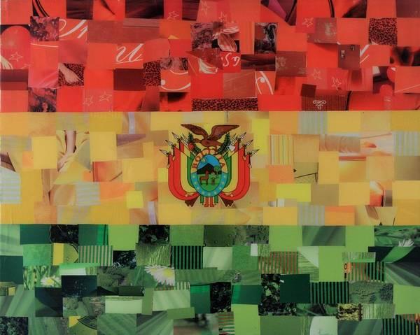 Bolivia Mixed Media - Bolivia Flag by Claudia Di Paolo