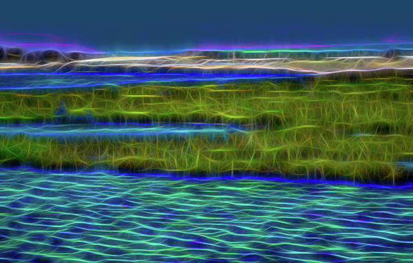 Marsh Bird Digital Art - Bolsa Chica Wetlands I Abstract 1 by Linda Brody