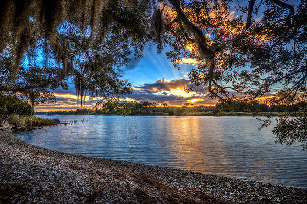 Photograph - Bon Secour River Under Tree by Michael Thomas