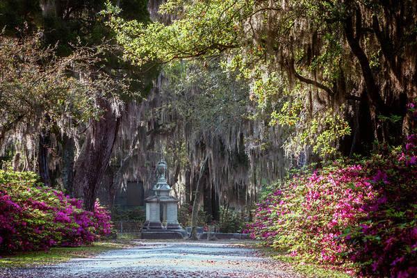 Photograph - Bonaventure Cemetery Iv by Joan Carroll