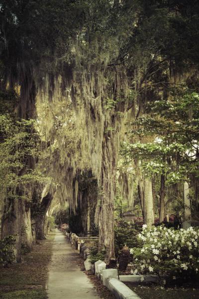 Photograph - Bonaventure Cemetery Lane by Joan Carroll