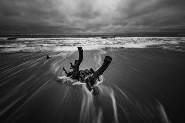 Photograph - Boneyard Beach At Folly Beach by Rick Berk