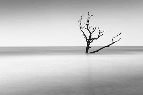 Wall Art - Photograph - Boneyard Beach I by Ivo Kerssemakers