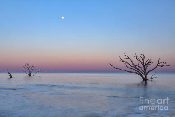 Photograph - Boneyard Beach Moonrise by Richard Sandford