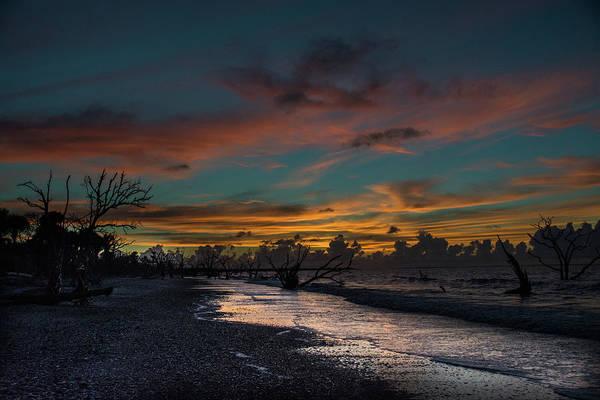 Photograph - Boneyard Beach by Randy J Heath