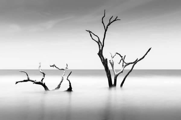 Wall Art - Photograph - Boneyard Beach Viii by Ivo Kerssemakers