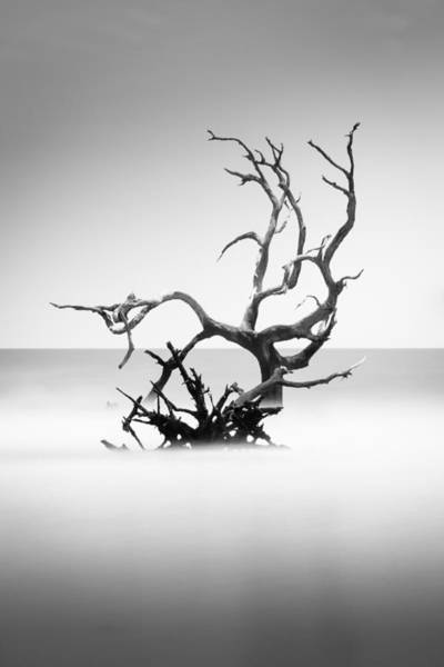Islands Photograph - Boneyard Beach X by Ivo Kerssemakers