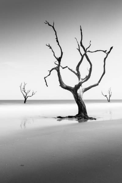 Island Photograph - Boneyard Beach Xiii by Ivo Kerssemakers