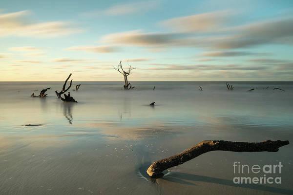 Bulls Island Photograph - Boneyard Sunrise by DiFigiano Photography