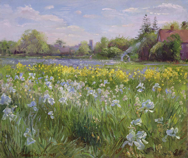 Bonfire Wall Art - Painting - Bonfire And Iris Field by Timothy Easton