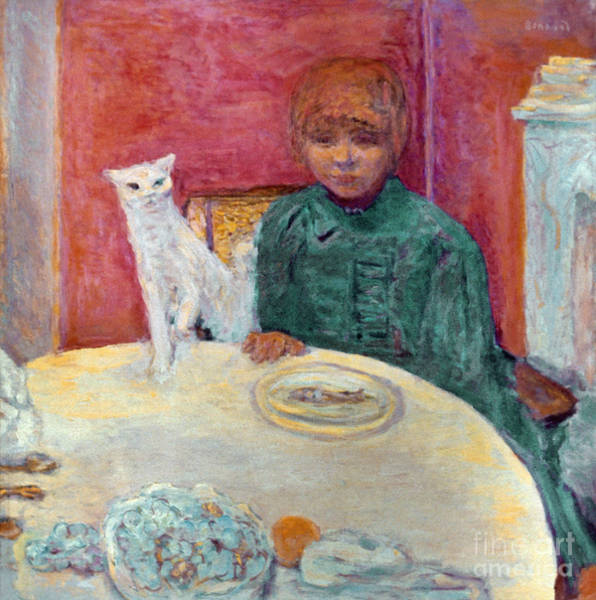 Photograph - Bonnard: Woman & Cat, 1912 by Granger