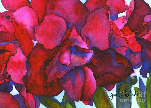 Amaryllis Painting - Bonnie by Jeff Friedman