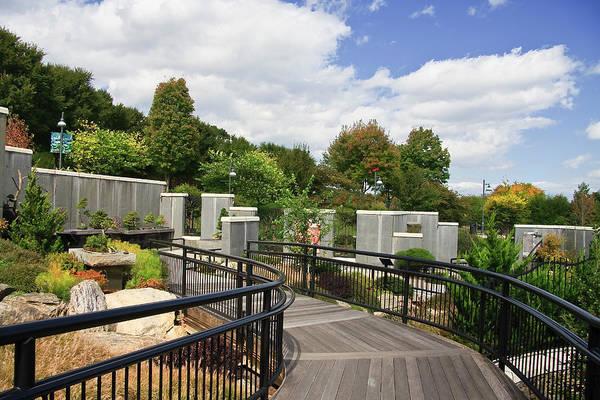 Photograph - Bonsai Garden At The North Carolina Arboretum by Jill Lang