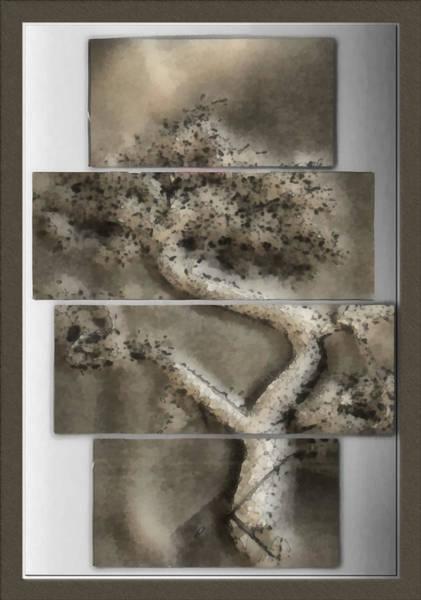Bonsai Tree Digital Art - Bonsai Illustrative by Mario Carini
