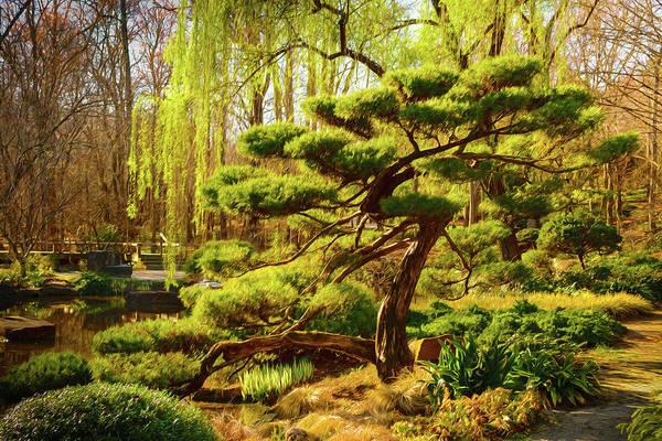 Bonsai Tree Digital Art - Bonsai by Keith Smith