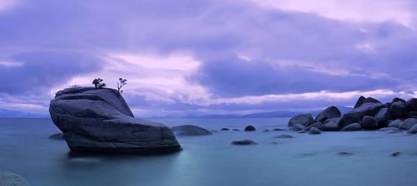 Photograph - Bonsai Rock Blues By Brad Scott by Brad Scott