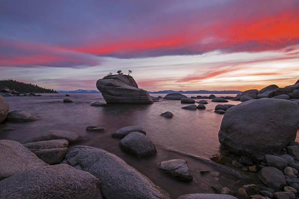 Photograph - Bonsai Rock On Fire by Brad Scott