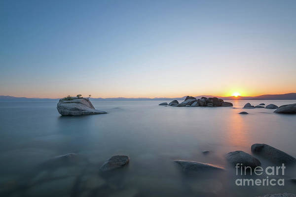 Photograph - Bonsai Rock Sun Rays  by Michael Ver Sprill