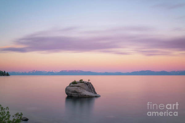 Photograph - Bonsai Rock Sunrise by Michael Ver Sprill