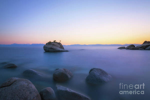 Photograph - Bonsai Rock Sunset by Michael Ver Sprill