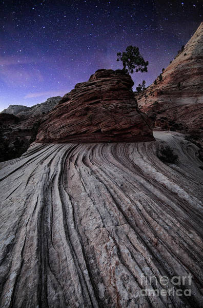 Bonzai In The Night Utah Adventure Landscape Photography By Kaylyn Franks Art Print
