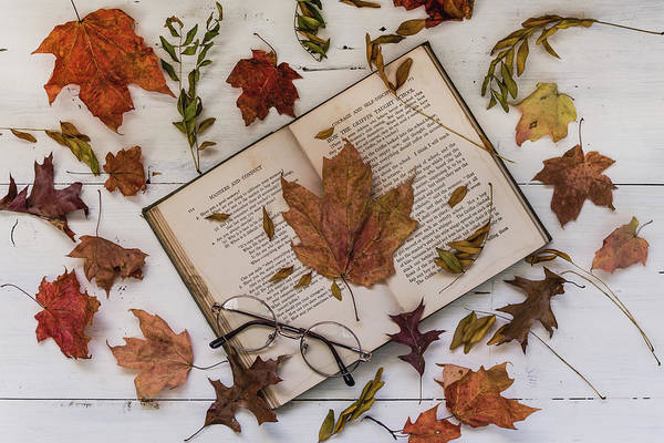 Photograph - Book Of Autumn by Kim Hojnacki