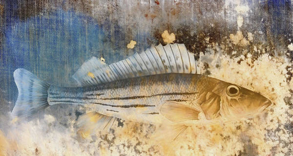Gold Digital Art - Book Of Fish Collage by Carol Leigh