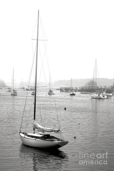 Copyright Wall Art - Photograph - Boothbay Harbor Memories by Olivier Le Queinec