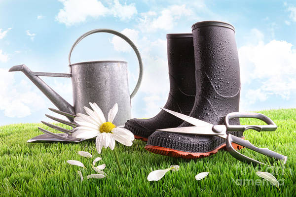 Gardening Wall Art - Photograph - Boots With Watering Can And Daisy In Grass  by Sandra Cunningham