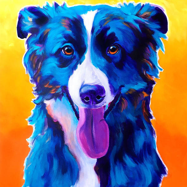Wall Art - Painting - Border Collie - Jinx by Alicia VanNoy Call