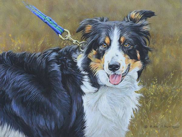 Wall Art - Painting - Border Collie Portrait by Alan M Hunt