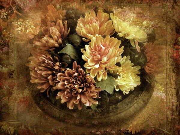 Earth Tones Photograph - Bordered Mums by Jessica Jenney