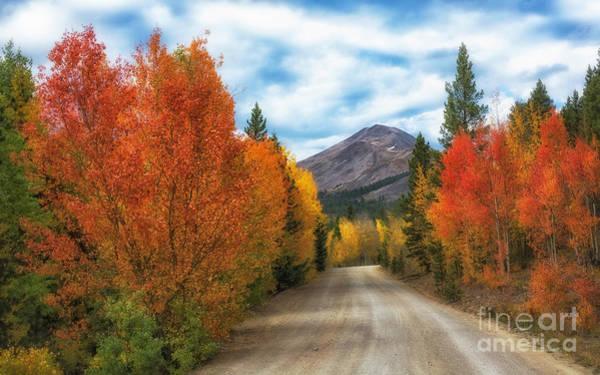 Photograph - Boreas Mountain by Bitter Buffalo Photography