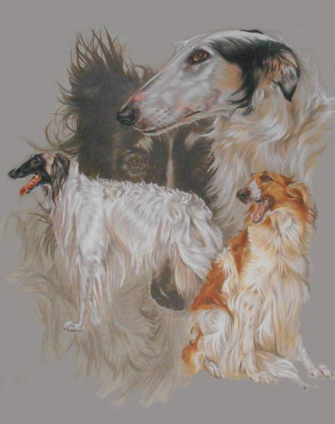 Mixed Media - Borzoi Revamp by Barbara Keith