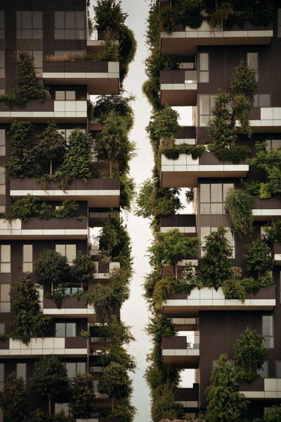 Photograph - Bosco Verticale Milan by Songquan Deng