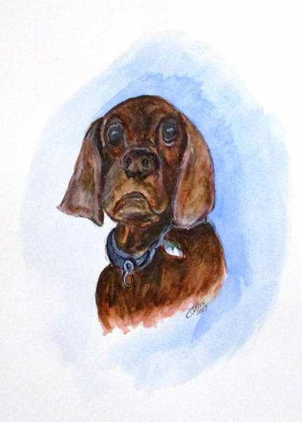 Painting - Bosely The Dog by Clyde J Kell