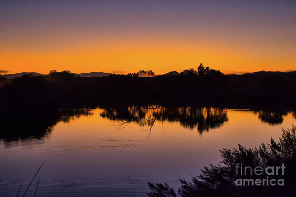 Photograph - Bosque Del Apache Sunset by Susan Warren