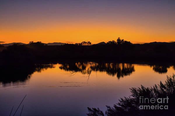 Bosque Del Apache Sunset Art Print