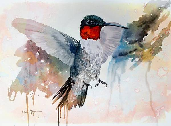 Painting -  Da185 Bossanova The Hummingbird By Daniel Adams by Daniel Adams