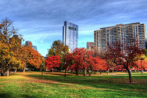 Photograph - Boston Common Autumn Trees Boston Ma by Toby McGuire