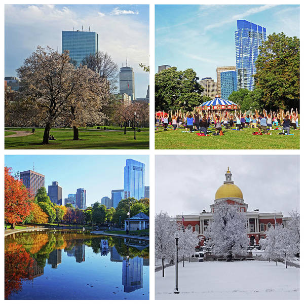 Photograph - Boston Common Four Seasons Boston Ma by Toby McGuire