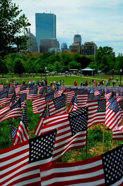 Photograph - Boston Common Memorial Day Flags Boston Ma by Toby McGuire